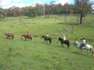 Horse Riding Hunter Valley
