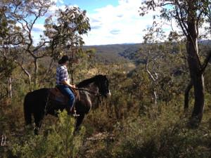 Horse Riding near Blue Mountains