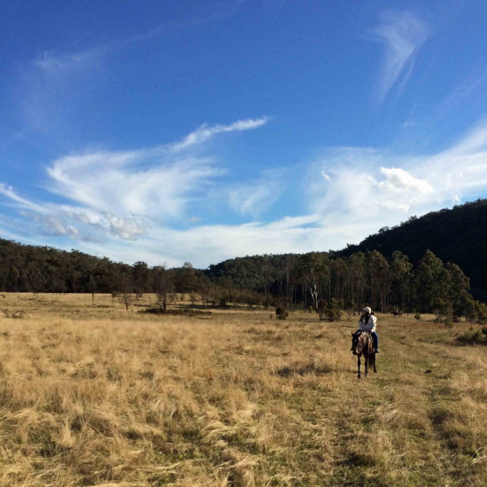 Horse Riding In The Australian Bush