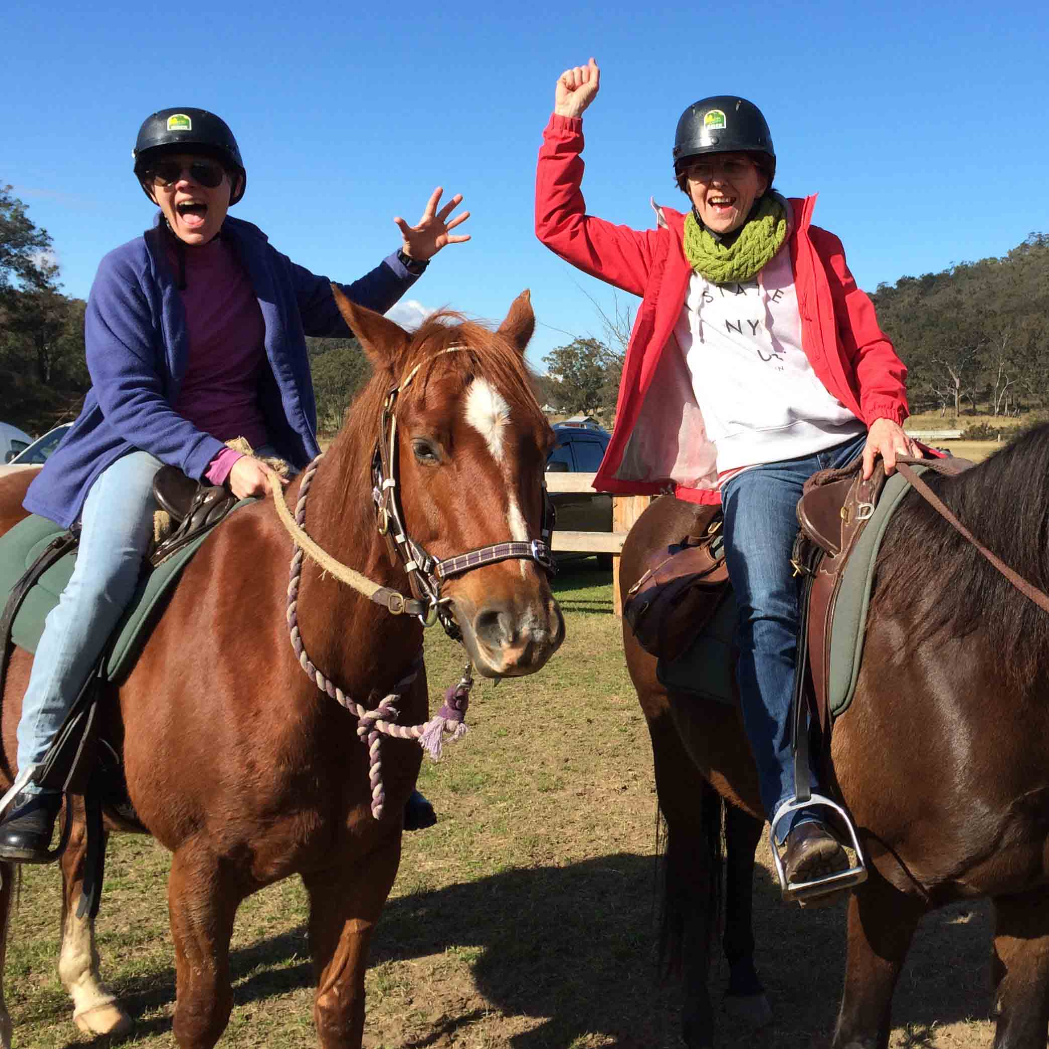 5 Reasons To Go Horse Riding Chapman Valley Horse Riding