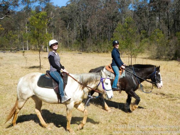 Knowing which horse ride to book chapman valley horse riding for Where to go horseback riding near me