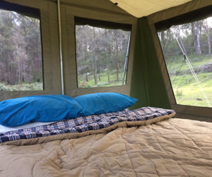 glamping-tents-with-bed